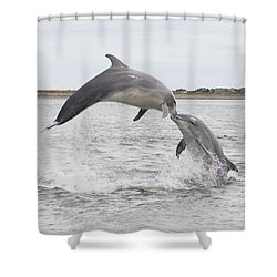 Bottlenose Dolphins - Scotland #1 Shower Curtain