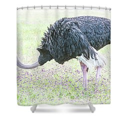 Bottom Heavy. Shower Curtain