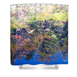 Shower Curtain featuring the photograph Bottoms Up Sunlight by Melissa Stoudt