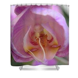Boudoir Orchid Shower Curtain