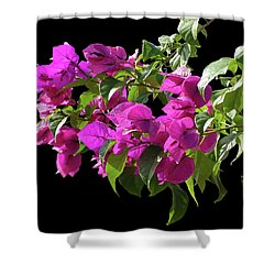 Bougainvillea Cutout Shower Curtain