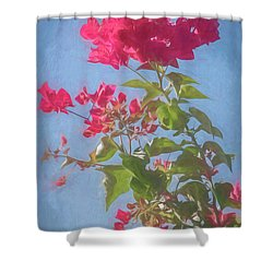 Bougainvillea Morning Shower Curtain