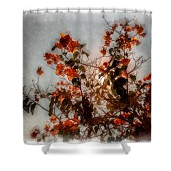 Bougainvillea Shower Curtain