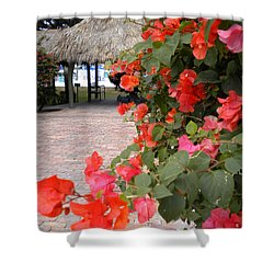 Shower Curtain featuring the painting Bouganvilla 2 by Renate Nadi Wesley