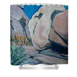 Boulder Shower Curtain by Richard Willson