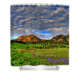 Boulder Spring Wildflowers Shower Curtain by Scott Mahon