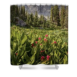 Boulders And Wildflowers In Albion Basin Shower Curtain