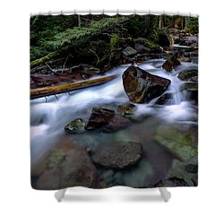 Boulders In Avalanche Creek Shower Curtain
