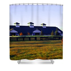Boulevard Barn Shower Curtain