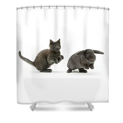 Bouncing With Bunny Shower Curtain