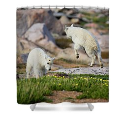 Bounder Shower Curtain by Jim Garrison