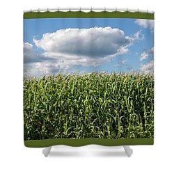 Bounty - Shower Curtain
