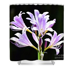 Bouquet In The Dark Shower Curtain