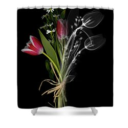 Bouquet X-ray Shower Curtain by Ted Kinsman