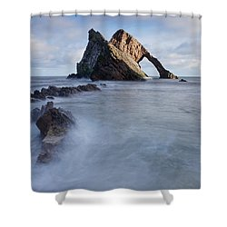Bow Fiddle Shower Curtain