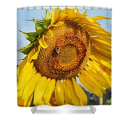 Bowed Sunflower Shower Curtain