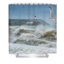 Bowleaze Cove Shower Curtain