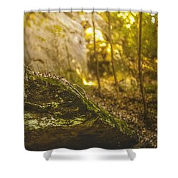 Bows And Arrows Shower Curtain
