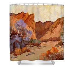 Box Canyon Shower Curtain by Diane McClary
