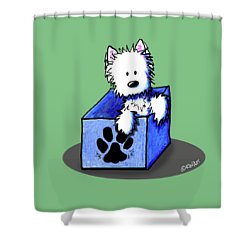 Boxed In Cuteness Shower Curtain by Kim Niles