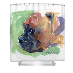 Boxer Pup Shower Curtain by Kimberly Santini