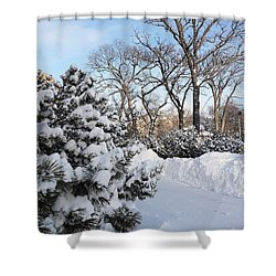Boxing Day Shower Curtain