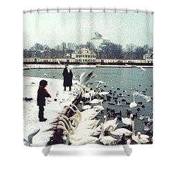 Boy Feeding Swans- Germany Shower Curtain by Nancy Mueller