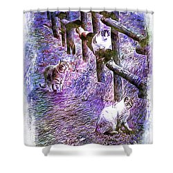 Boys On The Prowl Shower Curtain