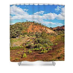 Bracchina Gorge Flinders Ranges South Australia Shower Curtain by Bill Robinson