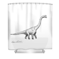 Brachiosaurus Black And White Dinosaur Drawing  Shower Curtain