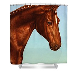 Braided Shower Curtain by James W Johnson