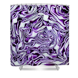 Brain Food Shower Curtain by Denise Pohl
