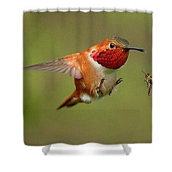 Brakes Shower Curtain