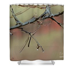 Branch With Water Abstract Shower Curtain