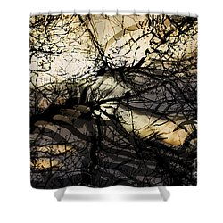 Shower Curtain featuring the photograph Branches Illuminated By Bright Sunshine, Double Exposed Image by Nick Biemans