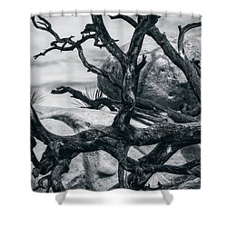 Branches Series 9150697 Shower Curtain