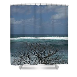 Branches Waves And Sky Shower Curtain