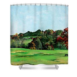 Beaver Valley Shower Curtain