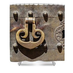 Brass Castle Knocker Shower Curtain