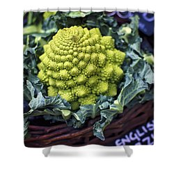 Brassica Oleracea Shower Curtain by Heather Applegate