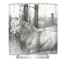 Breaker Study Shower Curtain