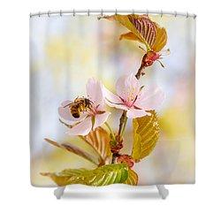 Shower Curtain featuring the photograph Breakfast At Sakura by Alexander Senin