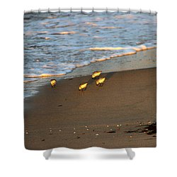 Breakfast On The Beaches Shower Curtain