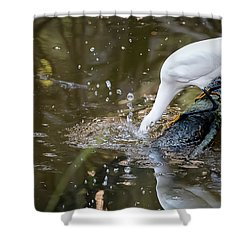Breakfast Plunge Shower Curtain