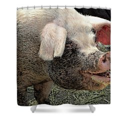 Breakfast With A Smile Shower Curtain by Gordon Dean II
