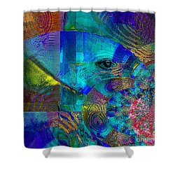 Breaking Borders Shower Curtain