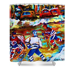 Breaking  The Ice Shower Curtain by Carole Spandau