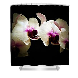 Breathless Beauty Shower Curtain