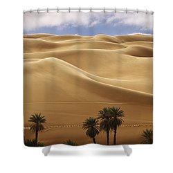 Breathtaking Sand Dunes Shower Curtain