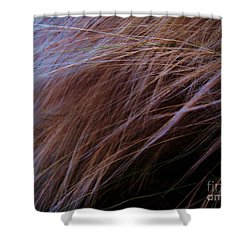 Shower Curtain featuring the photograph Breeze by Vanessa Palomino